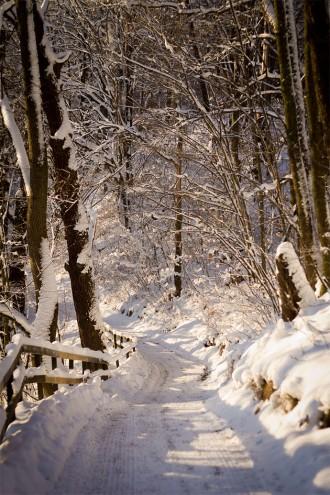 vinterwalk-3