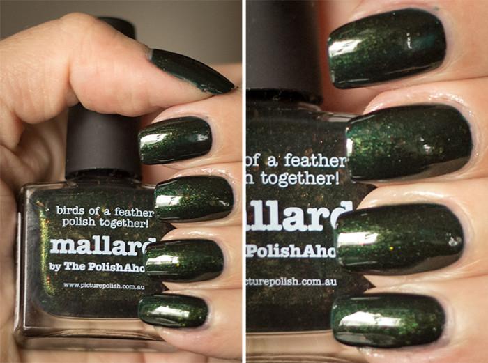 picturepolish-mallard-3